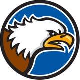 Eagle Head Screaming Circle Retro calvo Imagen de archivo libre de regalías