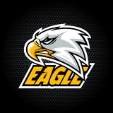 Eagle Head from side. Can be used for club or team logo. stock illustration