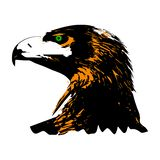 Eagle head side view. Stylized graphics stock illustration