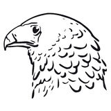 Eagle head (vector). Illustration of a head of the eagle (cmyk to rgb Royalty Free Stock Photos