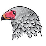 Eagle head (vector). Illustration of a head of the eagle (cmyk to rgb Stock Photography
