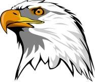 Eagle head. In vector file format vector illustration
