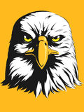 Eagle Head Vector - Front View Cartoon Fotografie Stock