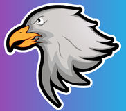 Eagle Head Vector Illustration Stock Photos