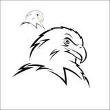 Eagle head Royalty Free Stock Photo