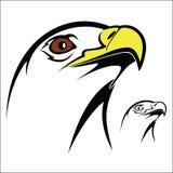 Eagle head Royalty Free Stock Photos