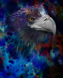 eagle head on a watercolor background stock illustration