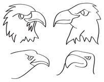 Eagle Heads Closeup Line Art Vector Illustration Stock Images