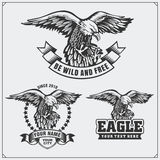 Eagle heraldry coat of arms. Labels, emblems and design elements for sport club. Royalty Free Stock Photo