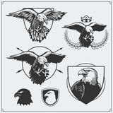 Eagle heraldry coat of arms. Labels, emblems and design elements for sport club. Black and white Royalty Free Stock Photography