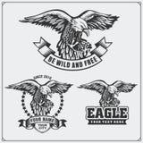 Eagle Heraldry Coat av armar Etiketter, emblem och designbeståndsdelar för sportklubba Royaltyfri Foto
