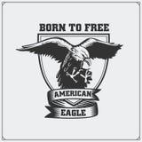 Eagle Heraldry Coat dos braços Emblema para o clube de esporte Fotos de Stock