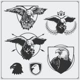 Eagle Heraldry Coat dos braços Etiquetas, emblemas e elementos do projeto para o clube de esporte Fotografia de Stock Royalty Free