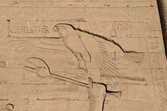 Eagle hieroglyph Royalty Free Stock Photo