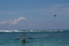 Eagle In himlen över havs- och fishigfartyget Arkivbild