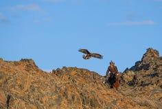 Eagle hunter Stock Photography