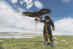 Eagle Hunter holding Golden Eagle while Spreading its large wings stock photography