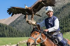 Eagle Hunter rymmer hans örnar på hästrygg, ordnar till för att ta flyg Fotografering för Bildbyråer