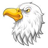 Eagle huvudmaskot på en vit bakgrund royaltyfri illustrationer