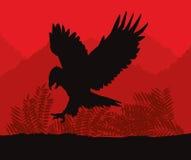 Eagle Icon Fond de paysage Dessin de vecteur Photos libres de droits