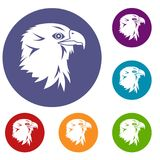 Eagle icons set Royalty Free Stock Photography
