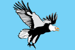 Eagle illustration,very detailed Royalty Free Stock Photo