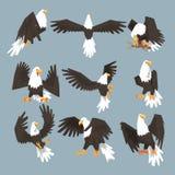 Eagle An Image Set Hunting chauve sur Gray Background Illustration de Vecteur