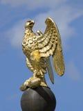 Eagle imperial Fotos de archivo libres de regalías