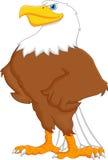 Eagle-Karikatur Lizenzfreie Stockfotos