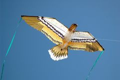 Eagle Kite Stock Photography