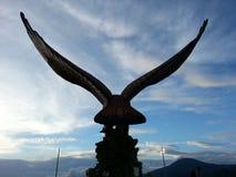 Eagle kwadrat Zdjęcie Stock
