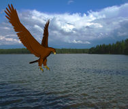 Eagle Lake. Rendered eagle about to catch fish at lake Stock Image