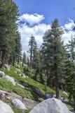 Eagle Lake-sleepmeer Tahoe stock afbeelding