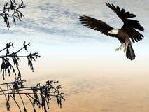 Eagle Landing. Bald Eagle Landing in a Tree royalty free illustration