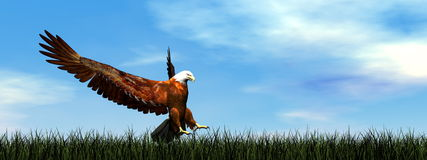 Eagle landing - 3D render Stock Photography