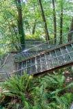 Eagle Landing Stairs 2 Fotografía de archivo libre de regalías