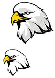 Eagle mascot Stock Photography