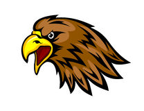 Eagle mascot Royalty Free Stock Images