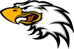 Eagle Mascot Head Vector Graphic Royalty Free Stock Image
