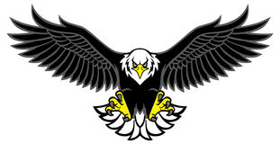 Eagle mascot spread the wings. Vector of eagle mascot spread the wings