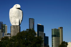 Eagle in Melbourne stock images