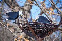 Eagle Nest Statue in Decorah, Iowa Stockbild