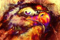 Eagle op abstracte kleurenachtergrond Profiel portratit Brandeffect Stock Afbeelding