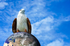 Eagle over the earth with blue sky background Stock Photo