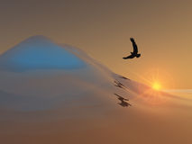 Eagle Over Ice Hill Stock Photo