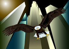 Eagle over New York Stock Afbeelding