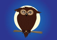 Eagle-owl on twig in the night. Vector illustration vector illustration