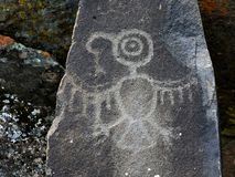 Eagle petroglif Zdjęcia Stock
