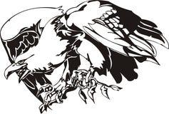 Eagle - predatory bird. Stock Photo