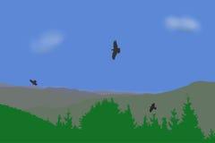 Eagle que vuela sobre las montañas ajardina, vector el ejemplo Fotos de archivo